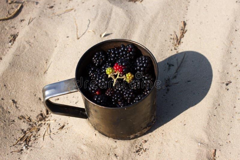 Ежевики серии в кружке металла сражают на песке Туризм, располагаясь лагерем, перемещение стоковое изображение