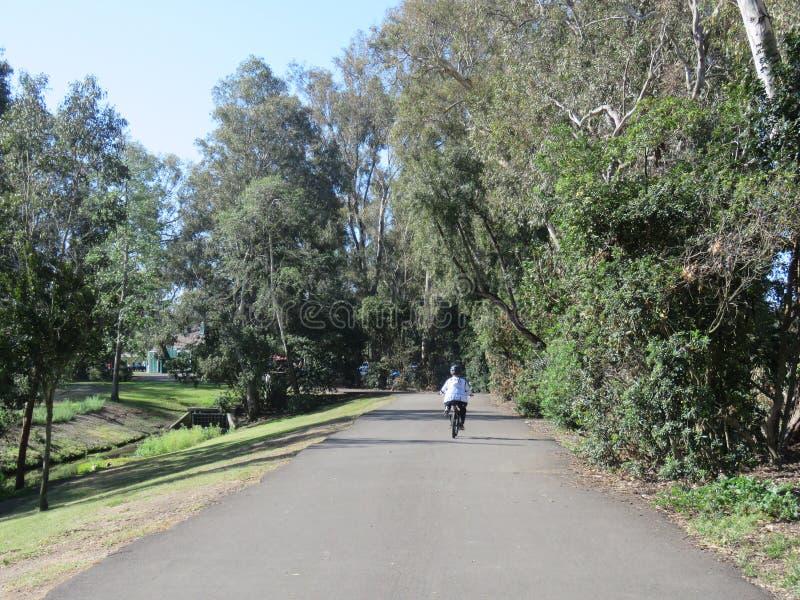 Езда велосипеда в парке Huntington Beach стоковые фотографии rf
