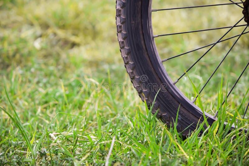 Езда велосипеда на горе стоковая фотография rf