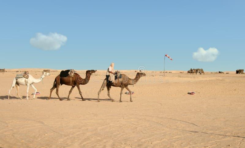 Езда пустыни