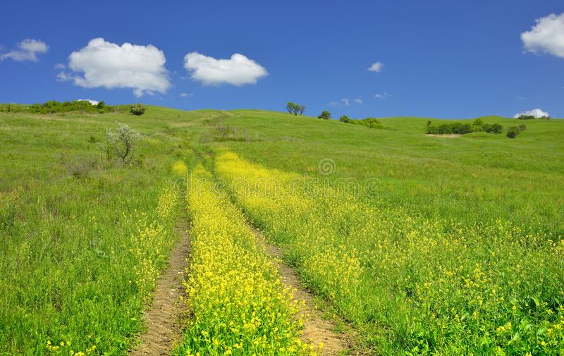 Езда весны стоковое изображение