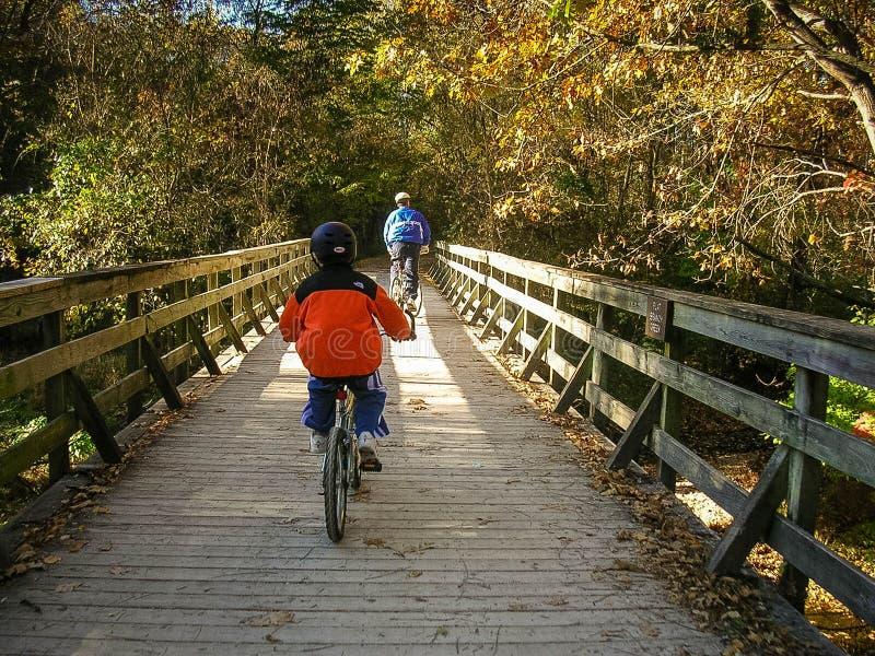 Езда велосипеда отца и сына стоковые изображения rf