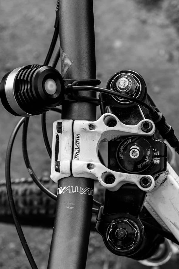 Езда горного велосипеда стоковое изображение rf