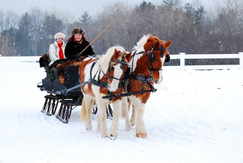 Езда саней зимы стоковые фото