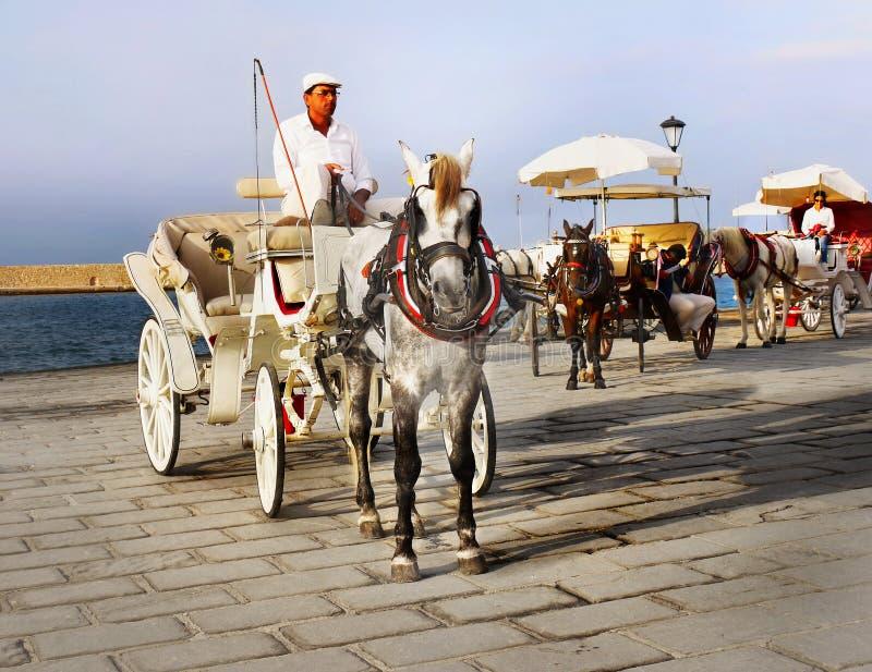 Езда экипажа лошади кучера стоковая фотография