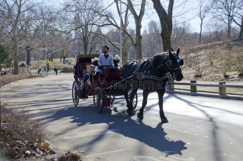 Езда экипажа Central Park стоковое фото rf
