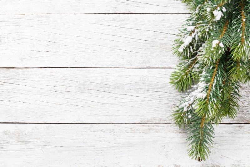 Ель снега рождества стоковая фотография