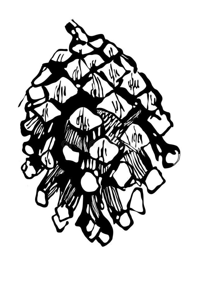 ель чертежа конуса бесплатная иллюстрация