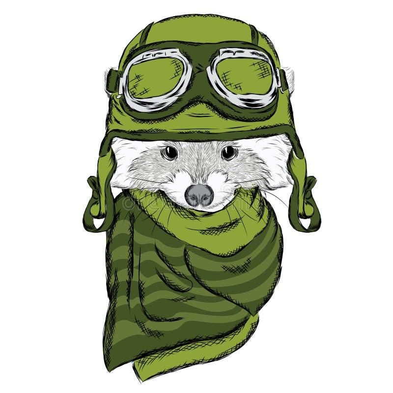 Енот в шлеме милый вектор raccoon Пилот Мотоциклист иллюстрация вектора