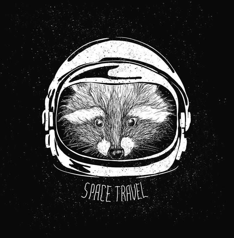 Енот шлема космоса бесплатная иллюстрация