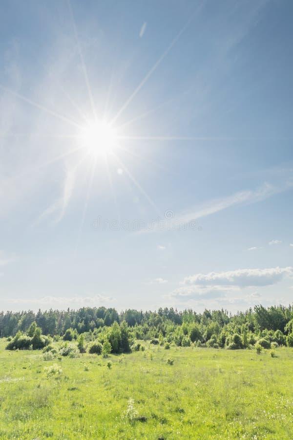 день солнечный стоковые фотографии rf