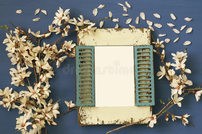 дерево вишневых цветов весны белое и пустая рамка фото стоковая фотография rf