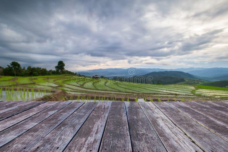 деревянные поля пола и риса террасы земледелия Blured на m стоковые изображения