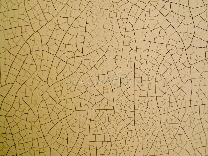 деревянный отказ на коже низкой высокой температурой иллюстрация вектора