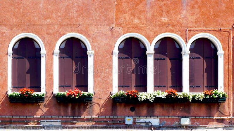 5 деревянных окон и старой стена спада стоковое изображение