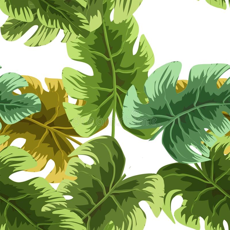 Естественная безшовная картина с зелеными тропическими листьями или разбросанной экзотической листвой заводов джунглей на белой п иллюстрация штока