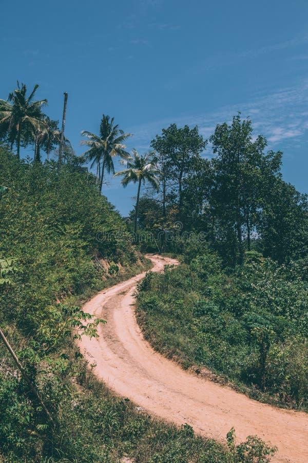 Естественная дорога в лесе Таиланда стоковое изображение rf