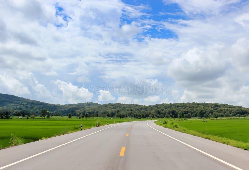 Естественная дорога стоковое фото