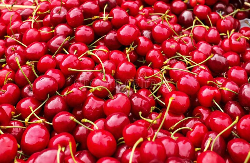 Естественная еда, плод, вишня, продукция