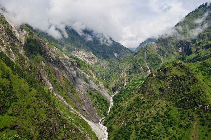 Естественная зеленая предпосылка пейзажа в Himachal Pradesh, Индии стоковое изображение rf
