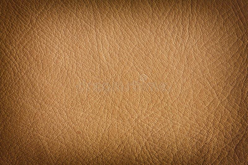 Download Естественная кожаная предпосылка Стоковое Фото - изображение насчитывающей антиквариаты, запятнано: 40580938