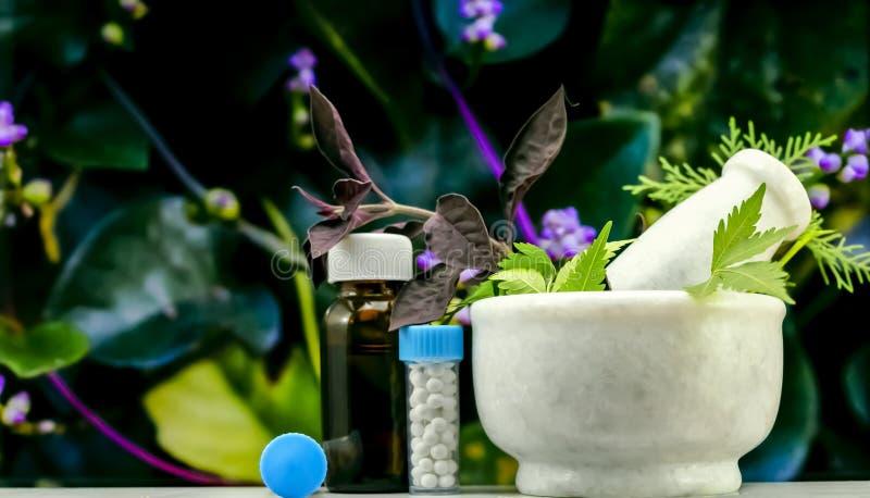 Естественная концепция гомеопатии – травы лечения в миномете и пестике рядом с гомеопатической медициной состоя бутылка таблеток  стоковое фото rf