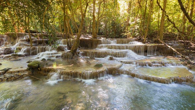 Естественная многократная цепь наслаивает глубокий водопад потока Forrest стоковые фото