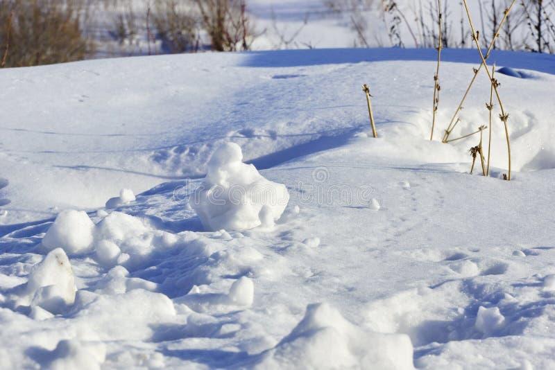 Естественная предпосылка зимы снежные графики снег белый и sh стоковое фото