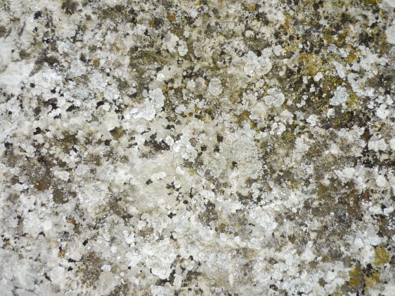 Download Естественная предпосылка текстуры камня Стоковое Фото - изображение насчитывающей земля, климат: 41657646