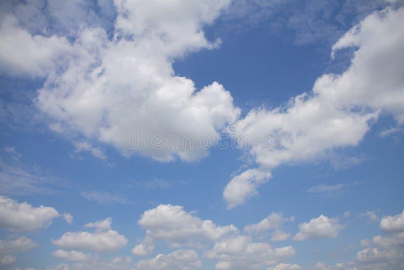 Естественное небо с облаками небольшим кумулюсом, белизной циррокумулуса и голубым небом стоковые изображения rf
