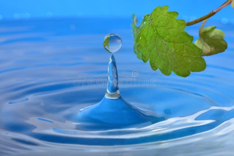 Естественное падение воды стоковое фото
