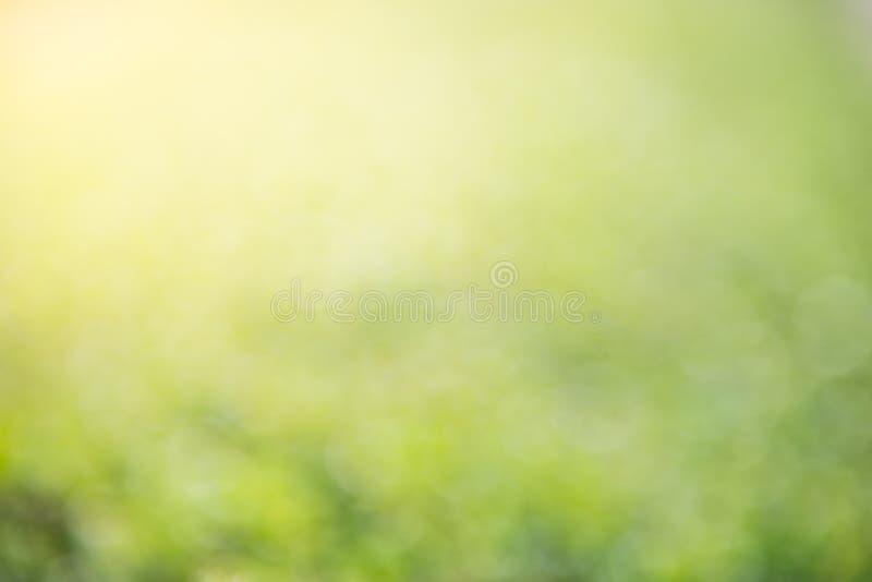 Естественное Bokeh, запачканное bokeh стоковые изображения rf