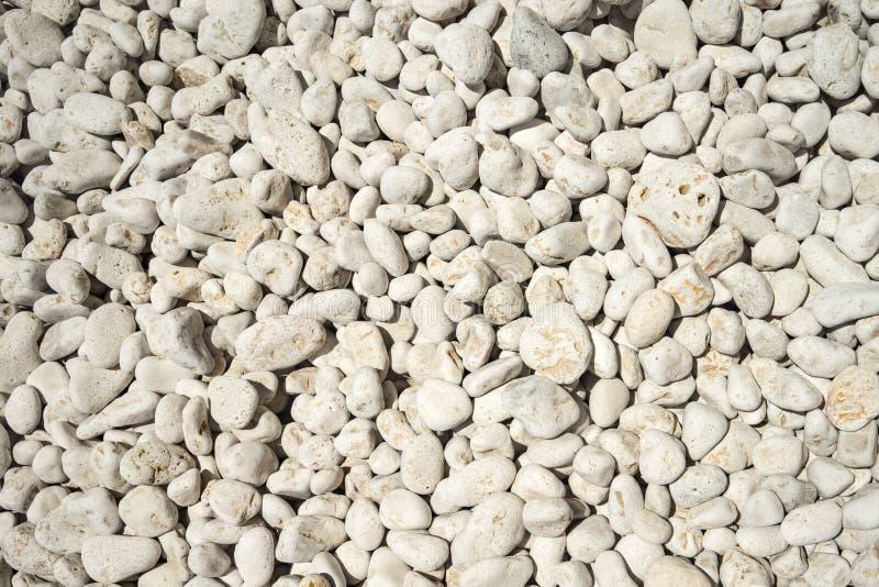 Естественно отполированная белая предпосылка камешков утеса стоковая фотография rf