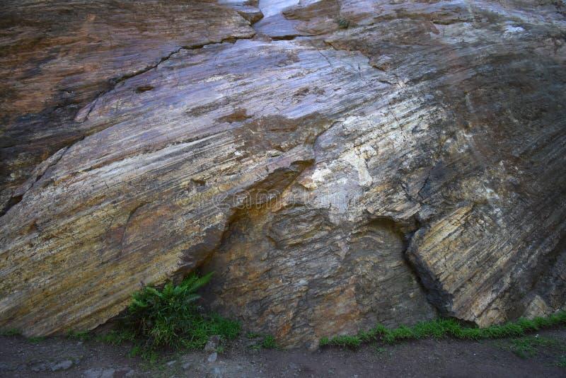 Естественно отполированный slickenside утес на высотах короны паркует, Сан- стоковое фото rf