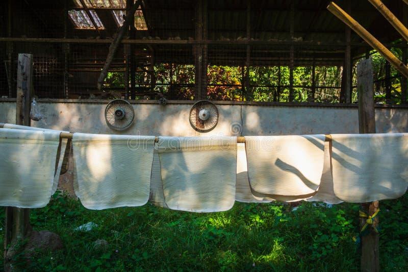 Естественно приобретенная индийская резина вися в листах для того чтобы высушить стоковая фотография rf