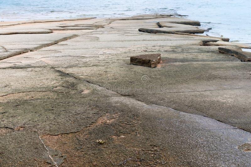 Естественные ископаемые пляж раковины или погост Seashell стоковые изображения rf