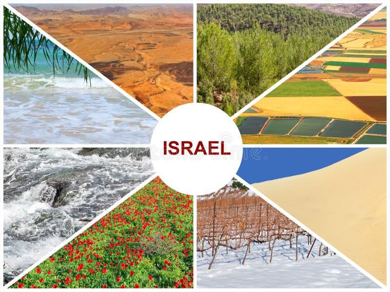 Естественные ландшафты Израиля стоковое фото rf