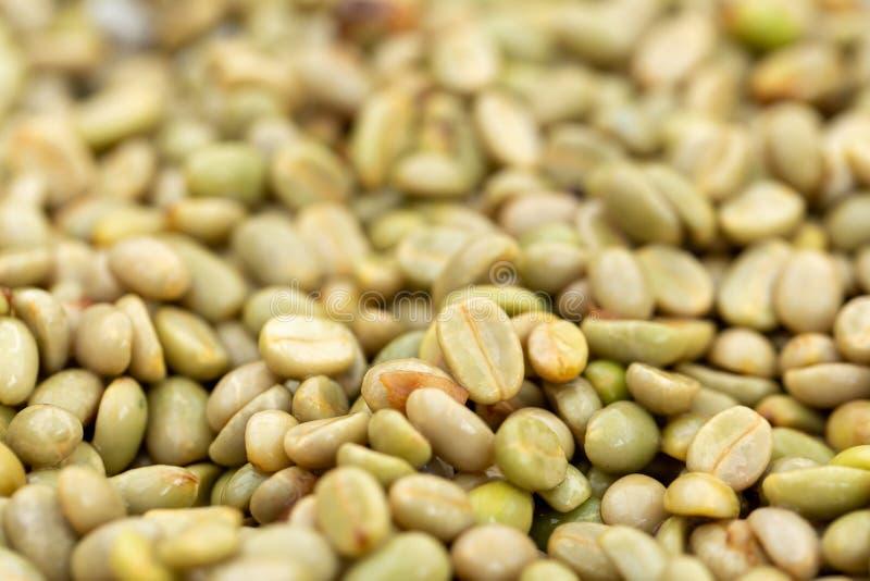Естественные органические зеленые кофейные зерна стоковая фотография