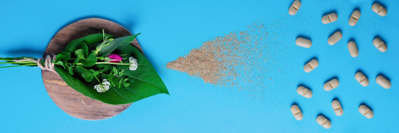 Естественные таблетки овоща, добавка, набор целебных трав концепция здоровья естественных и овоща стоковые изображения rf