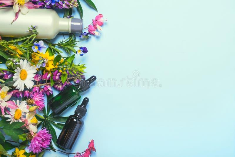 Естественные установленные косметики Органические продукты и одичалые травы и цветки стоковые изображения