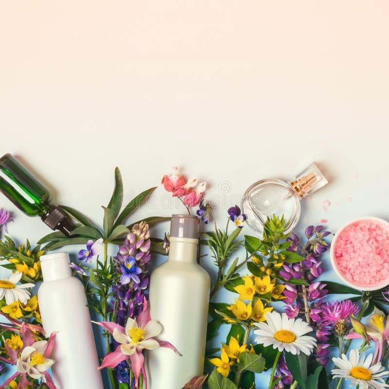 Естественные установленные косметики Органические продукты и одичалые травы и цветки стоковые фотографии rf