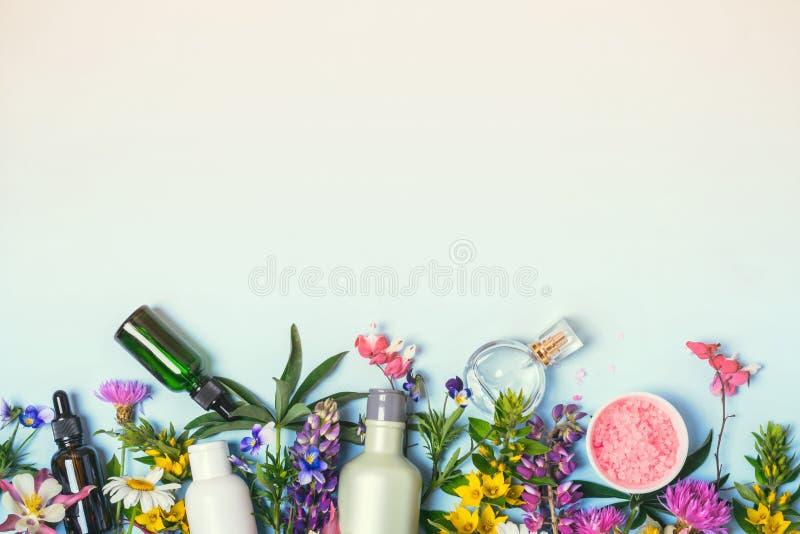 Естественные установленные косметики Органические продукты и одичалые травы стоковое фото rf