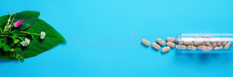 Естественные vegetable пилюльки, дополнение, зеленые лист и бутылка Концепция здоровья естественных и завода Здоровый уклад жизни стоковое изображение