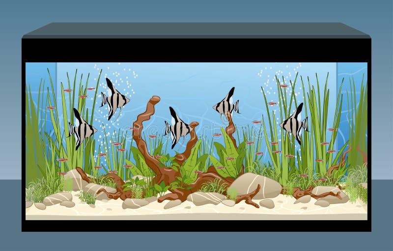 Естественный аквариум с рыбами и заводами иллюстрация штока