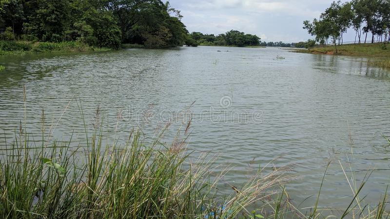 Естественный взгляд реки стоковые изображения