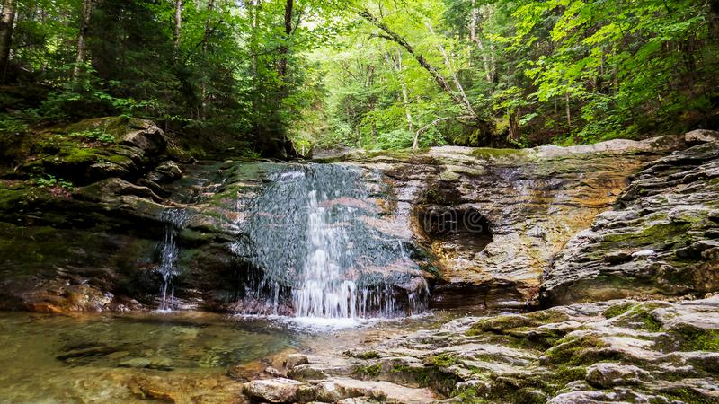 Естественный водопад в середине мирного леса стоковое фото