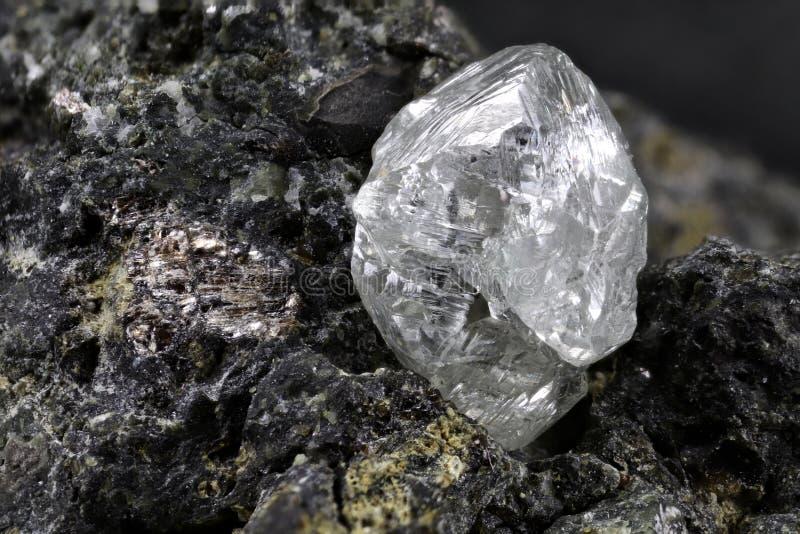 Естественный диамант стоковые фото