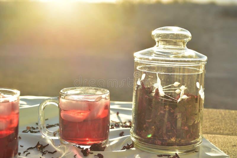 Естественный красный чай льда сделанный гибискуса цветет вызванные лепестки Fleur de ямайкой в Мексике стоковое фото
