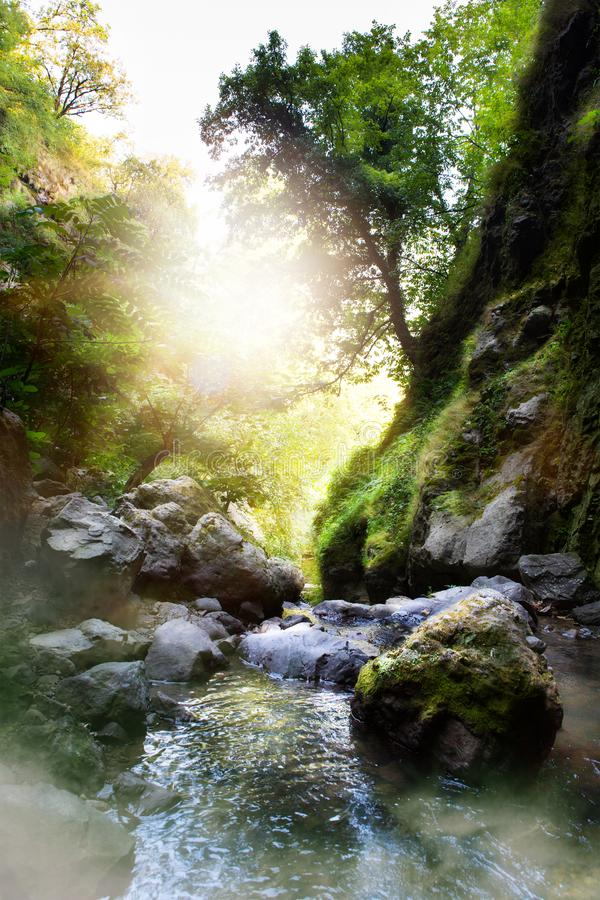 Естественный поток горы леса; Утесы покрытые с зеленым мхом; стоковая фотография