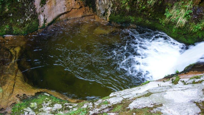 Естественный пруд воды и падение воды в древесины стоковое фото rf